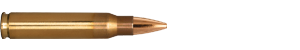 223 Remington 73 Grain Boat Tail Target ammo