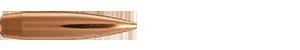 22 Caliber 80.5 Grain FULLBORE Target