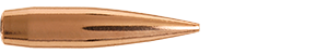 30 Caliber 185 Grain Hybrid Target