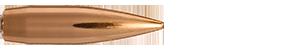 30 Caliber 168 Grain Classic Hunter