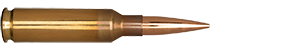 6.5 mm Creedmoor 144gr Long Range Hybrid Target