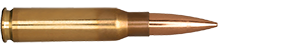 308 Winchester 155.5gr Fullbore Target