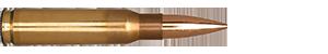 308 Winchester 168gr Classic Hunter
