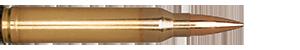 300 Winchester Magnum 168gr Classic Hunter