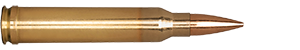 300 Winchester Magnum 185gr Classic Hunter