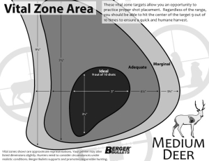 graphic regarding Printable Deer Target identified as Critical Zone On the lookout Plans Berger Bullets