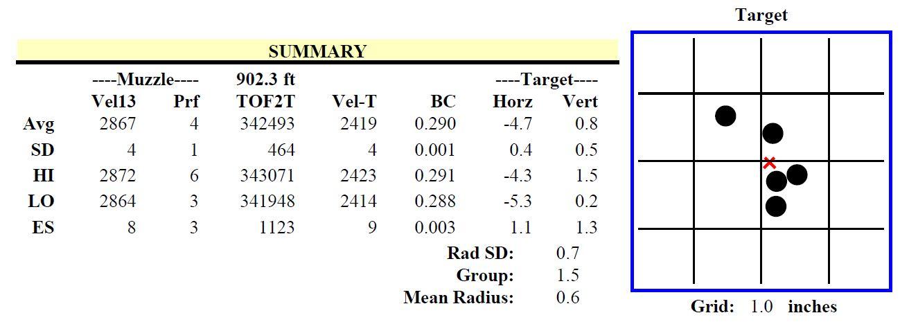 6mm 109gr Long Range Hybrid Target Group 2