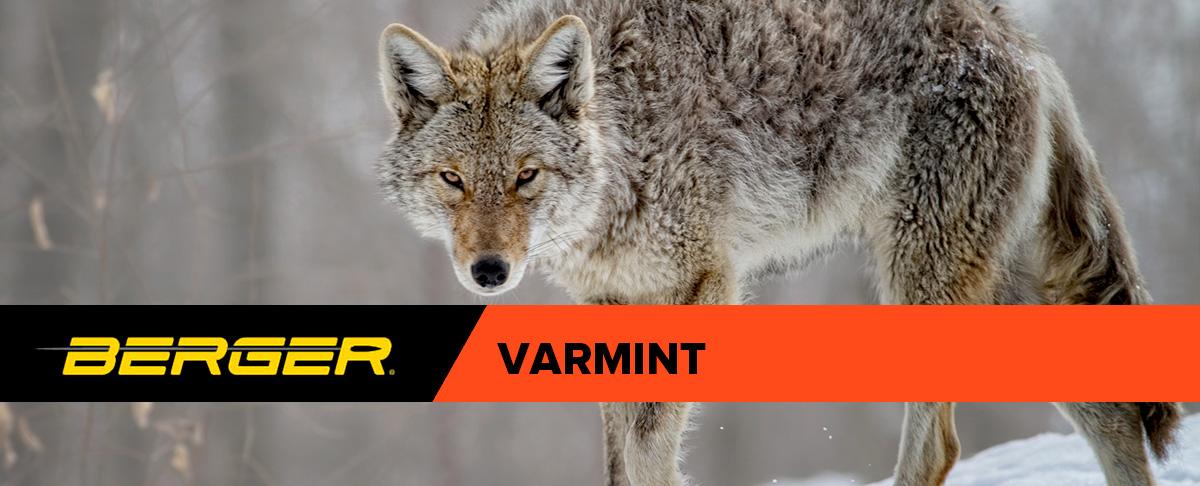 Berger Varmint Bullets Header